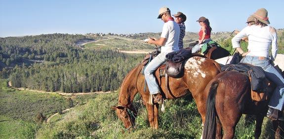 מודיעין, חוות סוסים / צלם: באדיבות חוות דורון